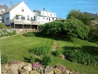 Port Clyde cottage photo - Backyard view from waterfront is abundant with perennials and apple trees.