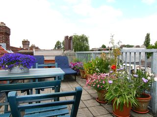 Sunny roof terrace, for Linnaeussuite guests only - East Amsterdam apartment vacation rental photo