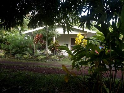 Hilo cottage rental - Hale Aloha, studio, which can accommodate up to four persons