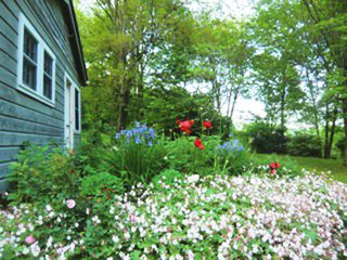 Great Barrington house photo - guest house and gardens (2)