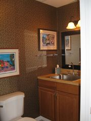 Asheville house photo - Downstairs half bath