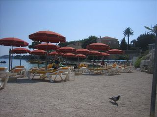 Saint-Jean-Cap-Ferrat condo photo - Beaulieu Beach, at 5 minutes walk