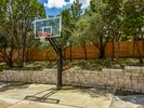 Professional Basketball Hoop & 2 balls provided