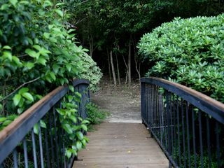 Austin townhome photo - Charming bridge to firepit area.