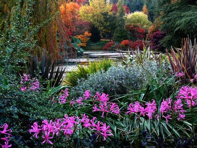 Vandusen Botanical Gardens - 8 minute drive from townhome