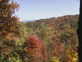 Gatlinburg cabin photo - Lots of fall color - what an amazing view!!!