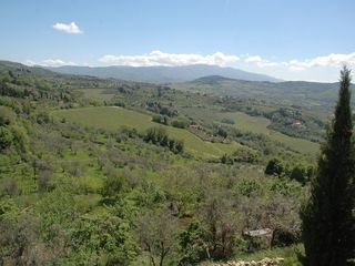 Fiesole villa photo - Landscape