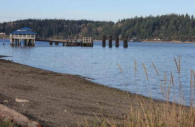 Anderson Island Ferry Dock and Public Beach & Kayak Launch