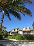 Tropical  Experience At A Florida Get Away, Welcome To Safety Harbor!