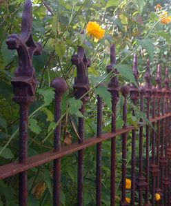 Fence along walkway to garden