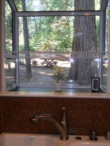 Pollock Pines house rental - Looking out the kitchen window to the backyard!