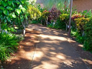 Lahaina condo photo - Dappled light plays on pathways