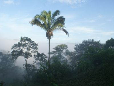 "View from Casa las Nubes, ""House in the Clouds at dawn"