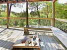 Deck - Enjoy a feeling of tucked-away seclusion just 15 minutes from downtown Austin.