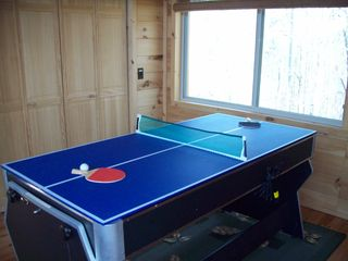 Bryson City cabin photo - Ping Pong Table!