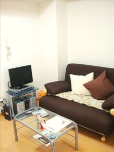 Sofa-bed with audio system (1BR type A)
