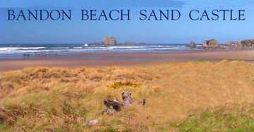 Bandon house rental - Premium Bandon beach location 1 acre One of the few homes actually ON the beach.