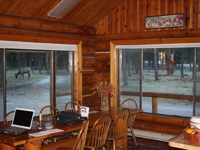 View out kitchen window; elk - left, whitetail - right. Large kitchen & table