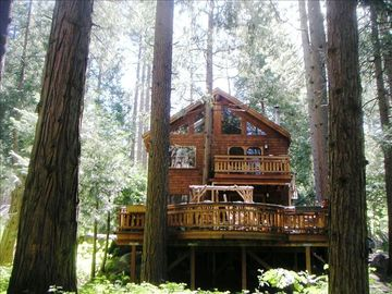 Idyllwild cabin rental - Nestled amongst tall pines & cedars Brooksong is quiet, private yet close to town