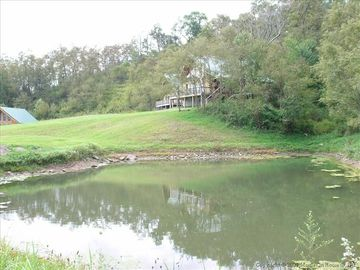 Large pond on the property. No fishing (we feed the fish).