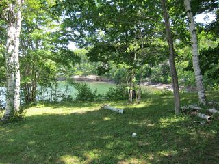 A little wooded grove near the point. - Harpswell cottage vacation rental photo