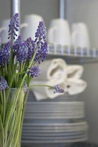 Blue flowers and kitchen