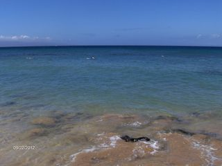 Honokowai condo photo - Affordable Maui vacation rental with ocean views and steps from beach.