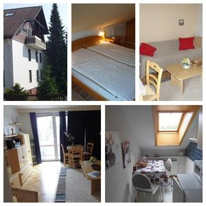 Apartment in the heart of the Harz