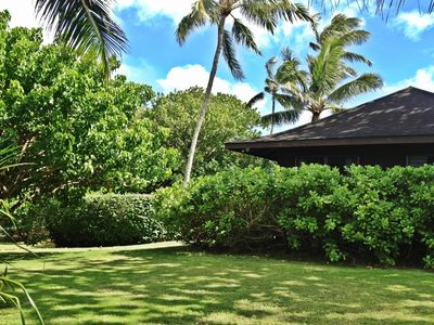 Large half an acre tropical landscaped yard!