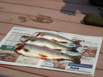 Swan river trout fishing, rafting, hiking, canoe rental & tubing