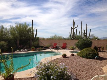 Oro Valley house rental - Beautiful, private backyard. Unwind in the hot tub or enjoy a dip in the pool!