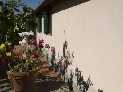 Photo for 1BR House Vacation Rental in Castagneto Carducci