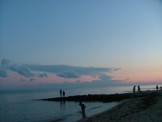 Dennisport cottage photo - Evening Fishing