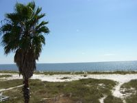Gulf Front, Pet Friendly, 2 Balconies Overlooking the Gulf, Near the Pier ~ Windsong 4