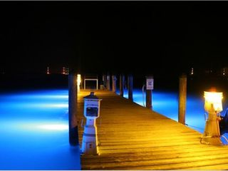 Marathon condo photo - Don't miss strolling the Marina docks at night!