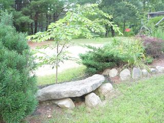 North Conway house photo - Have granite - will landscape