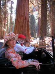 Mariposa Big Trees - Yosemite National Park house vacation rental photo