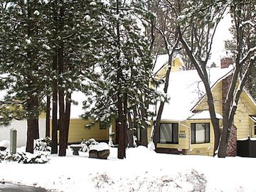 Moonridge house rental - An Upscale Getaway Surrounded By Trees