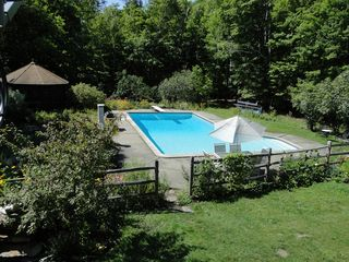 Ascutney farmhouse photo - Swimming pool shared with the main house.