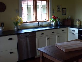 Charlottesville house photo - Kitchen has new cabinets and stainless-steel appliances