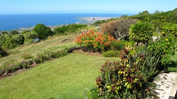 Holualoa ESTATE Rental Picture