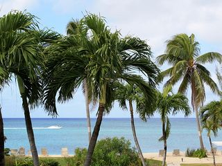 Grand Cayman condo photo - The Palm Trees at Harbour Heights