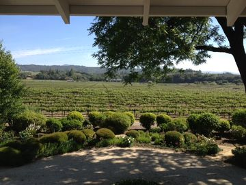 View from Master Bedroom looking toward Vineyard