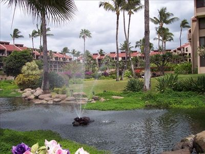 Resort Grounds with Fountains