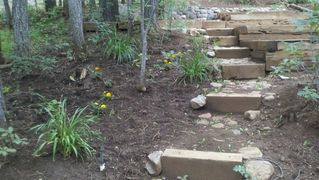 Pinetop cabin photo - Backyard Garden