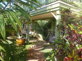 Sunset Beach house photo - beautiful palms and tropical plants in the garden entry