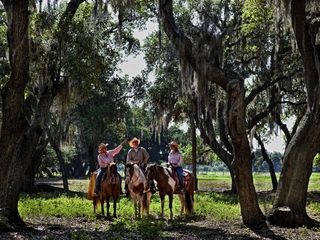 Lake Wales studio photo - Westgate River Ranch - Horseback Riding
