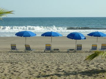 Lounge chairs and umbrellas available for rent on the beach.