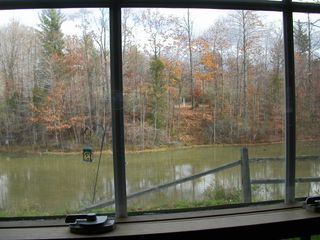 Fennville house photo - Photo from kitchen window looking at the pond and beyond
