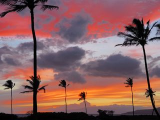 Kihei condo photo - another beautiful sunset from the condo's grounds